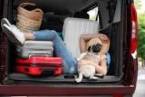 ТОП 6 вещей, которые должны быть в каждой машине